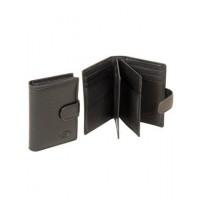 Стильный мужской кошелек из натуральной кожи Bretton SPA M51
